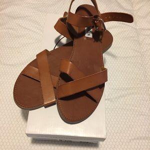*WORN ONCE* Steve Madden Bairn Sandals